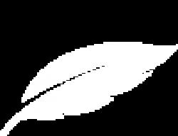 featherone